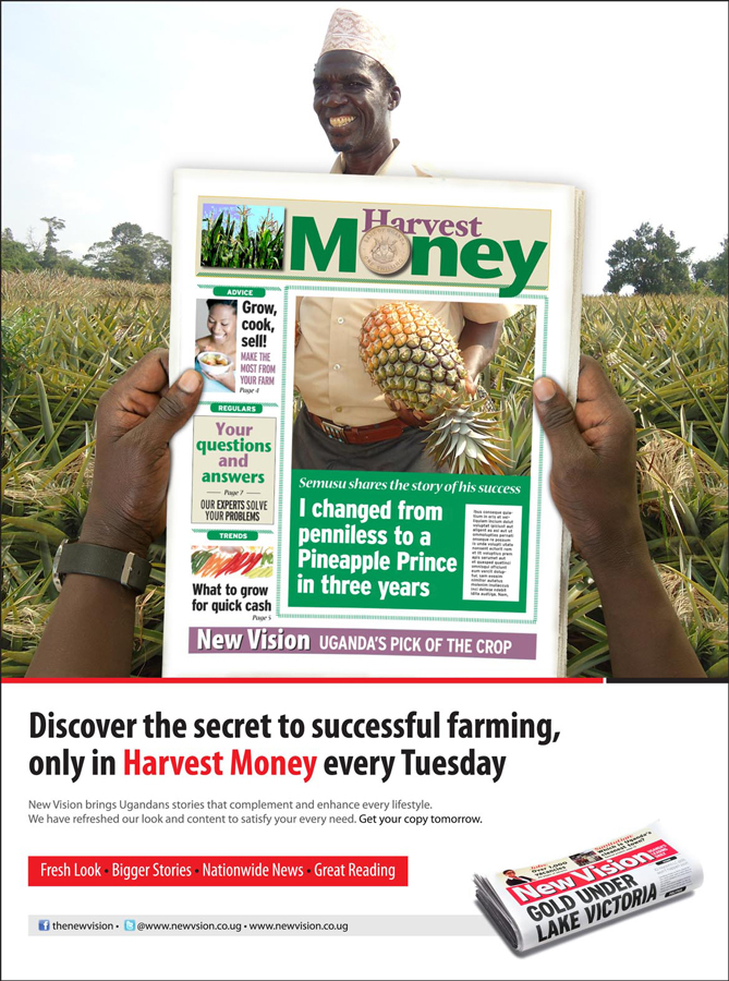 NV_HARVEST-MONEY_Rebranded-Pullouts_Ads_Final