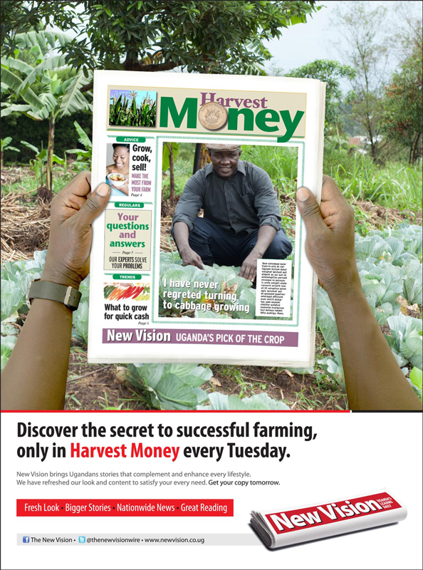 NV_Harvest-Money-Rebranded-Pullouts_Ads_FP_FINAL-OL[1]